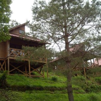 宮の向いキャンプ場