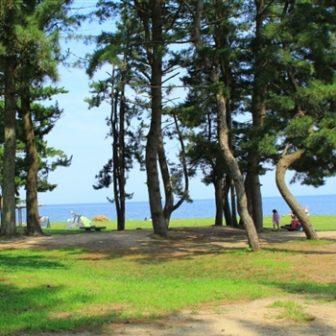 びわ湖こどもの国キャンプ場