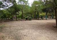 CAMP ~ NAVI