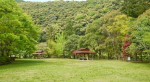 芝生サイト